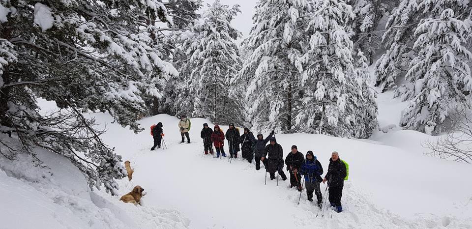 Kar Yürüyüşü Yapılmıştır.